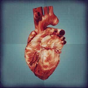 8 octubre corazones solitarios